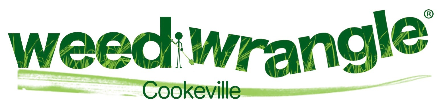 weedwrangle_cookeville