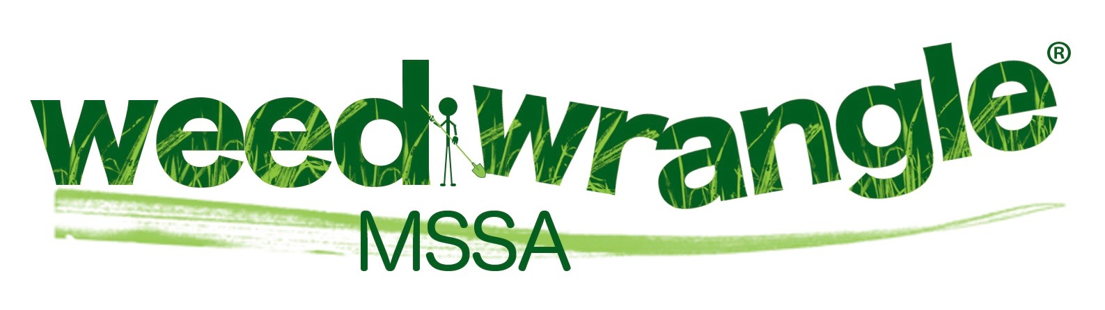 weedwrangle_mssa