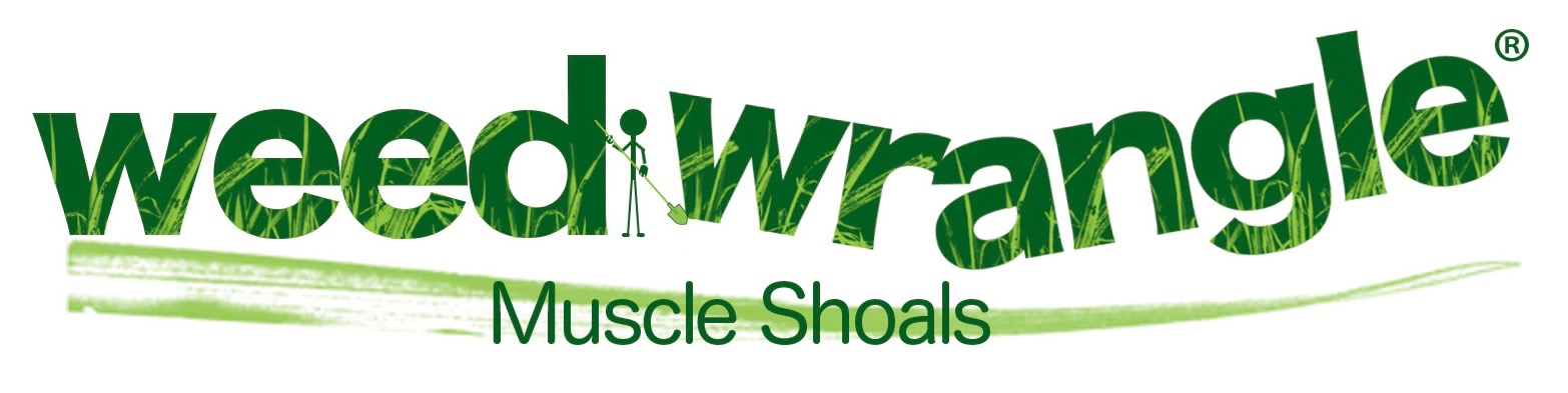 weedwrangle_muscleshoals